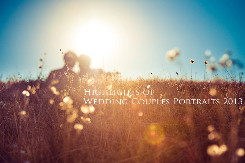Highlights of Wedding Couples Portraits 2013