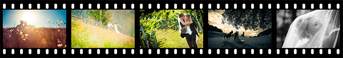 Hochzeitsvideo - Green Lemon Photography